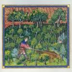 la forêt au moyen age repro3.jpg.png